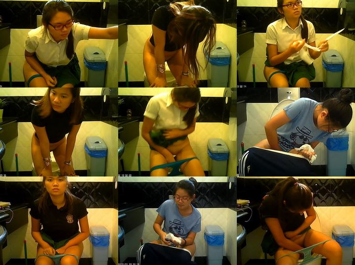 http://majav.org/Pic/Singapore_female_toilet_16.jpg